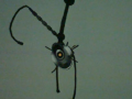 Early GLaDOS 3.png