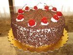 Cake Portal Wiki
