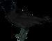 Bird/zh-hans